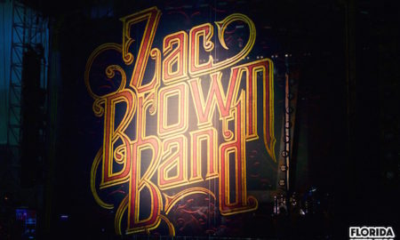 z brown band logo copy