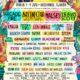 Okeechobee Music Arts Festival 2018